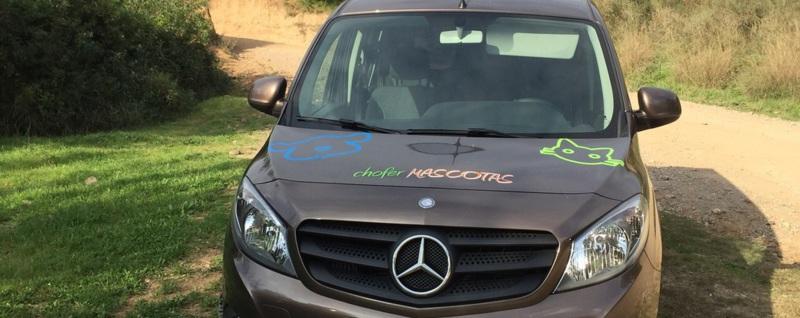 Chofermascotas vehiculo